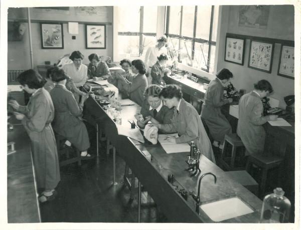 Biology 1952