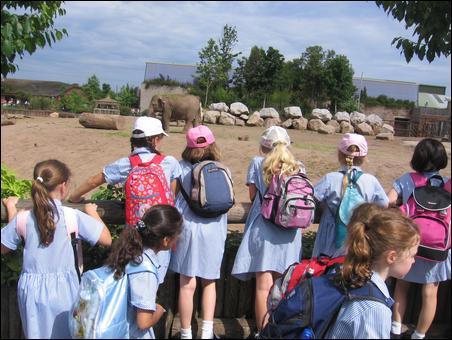 Hemker Park & Zoo - It's wild fun!